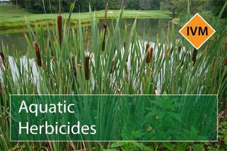 Picture for category Aquatic Herbicides