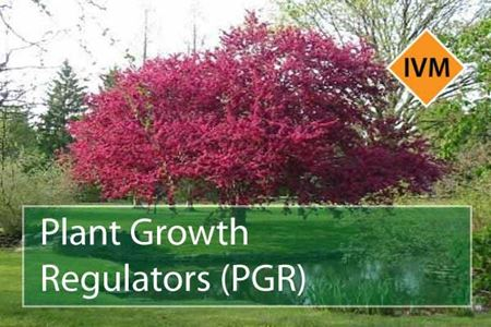 Picture for category Growth Regulators