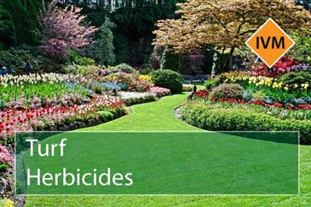Picture for category Turf Herbicides