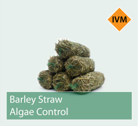 Picture for category Barley Straw