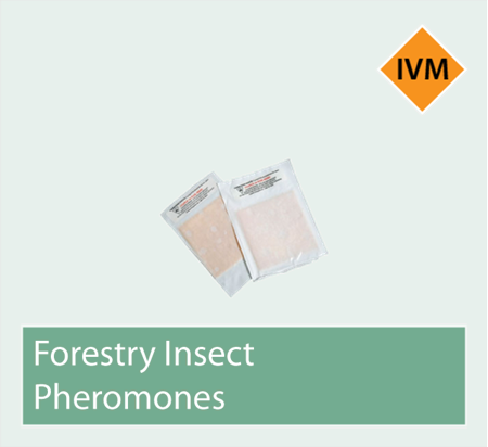 Picture for category Forestry Pheromones