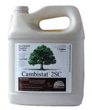 Rainbow TreeCare Cambistat 2SC Plant Growth Regulator